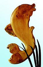 Корнепластика Дельфин